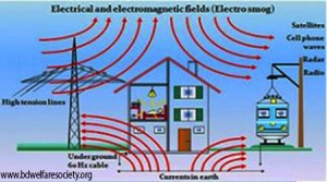 Electromagnetic wave pollution picture-04.