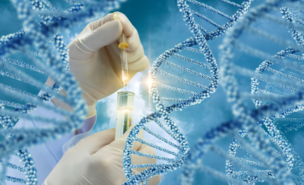 Genetic Predisposition  It is also a popular hypothesis.